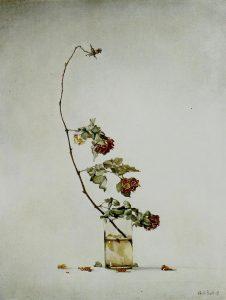 Claudio Bonichi, Tralcio di rose