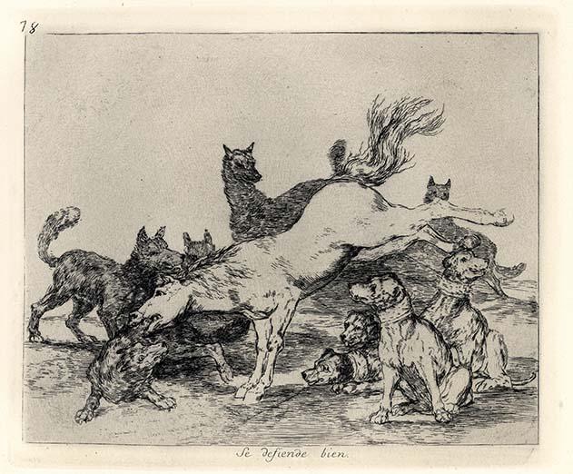 Francisco Goya, Se defiende bien, 1810-1814, acquaforte, cm 15,5x20