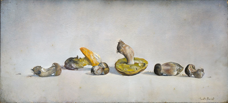 Claudio Bonichi, Tanti funghi , 198, olio su tavola, cm 36x80